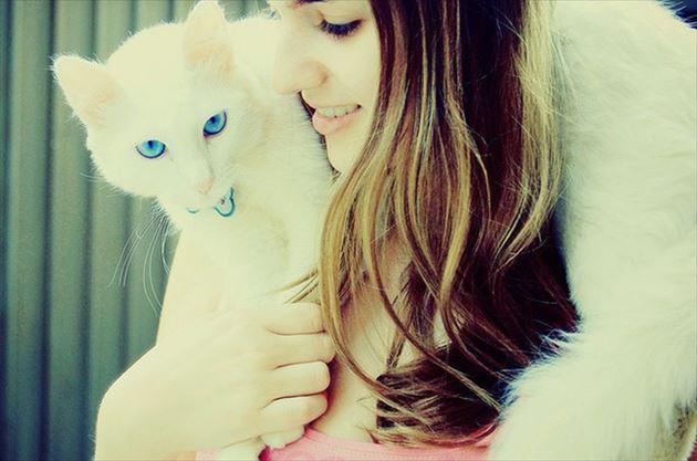 猫と女の子その4